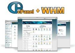 cPanel WHM License icon